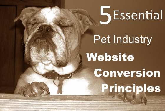 pet industry website conversion principles