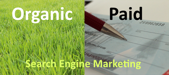 The Difference Between Organic vs Paid Search